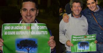 """MONTORO: Vicina all'epilogo la vicenda """"Pino"""". Dal flash mob ai confronti sui social, sino alla nota del sindaco Bianchino"""
