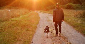 Coronavirus, il Viminale chiarisce: i decreti emanati non impongono un divieto assoluto di passeggiata